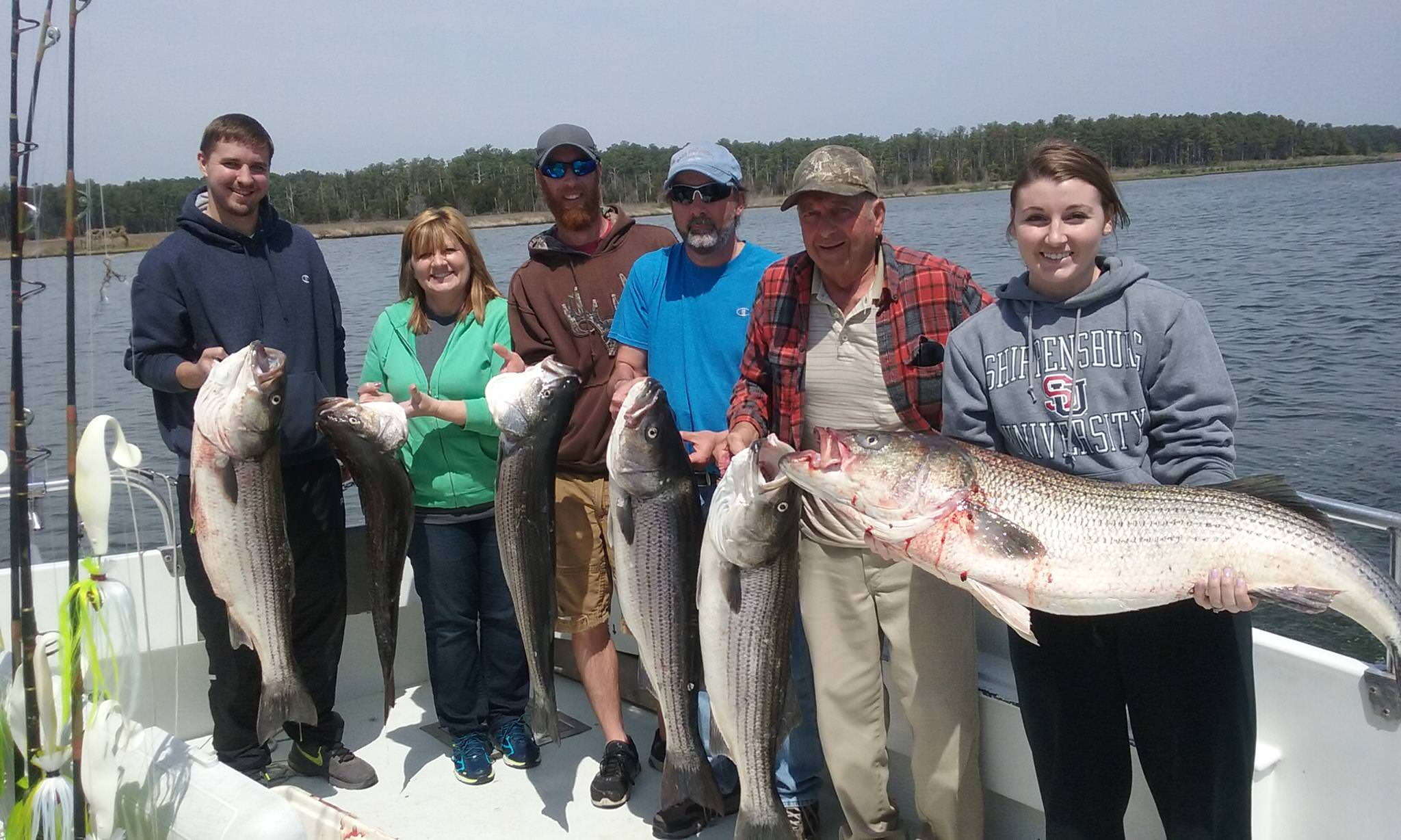 A Full Limit Of Chesapeake Bay Trophy Rockfish From Maryland's Eastern Shore!