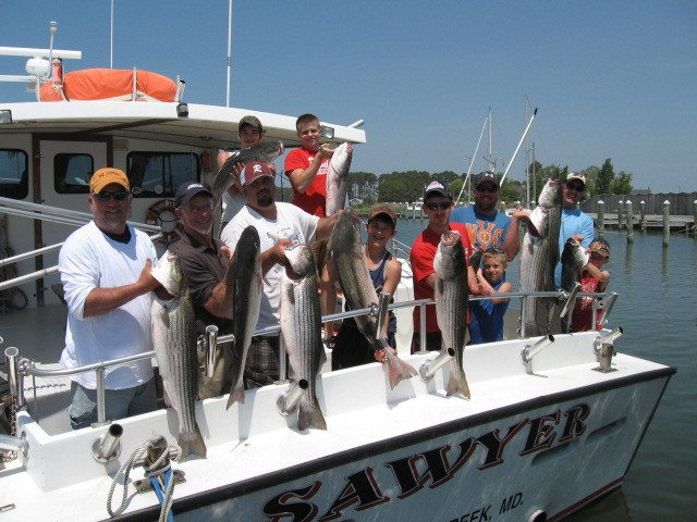 A Full Limit Of Chesapeake Bay Rockfish! Sawyer Chesapeake Bay Fishing Charters From Maryland's Eastern Shore!