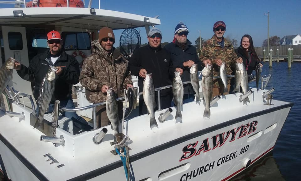 Chesapeake Bay Fishing Charters for Rockfish from Maryland's Eastern Shore!