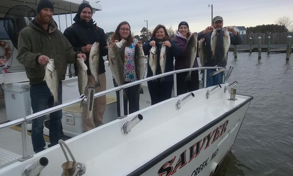 Another BIG Catch of Chesapeake Bay Striped Bass!